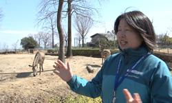 自然 こども 埼玉 県 公園 動物